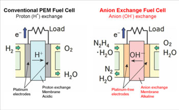 Precious Metal-Free Liquid-Feed Fuel Cell Systems