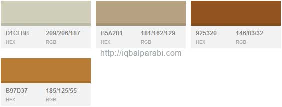 Warna Cat Rumah Minimalis Modern Muted